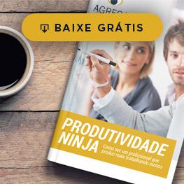 Ebook Produtividade Ninja